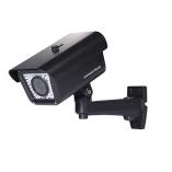 Câmera IP GXV3674_FHD_VF NEW